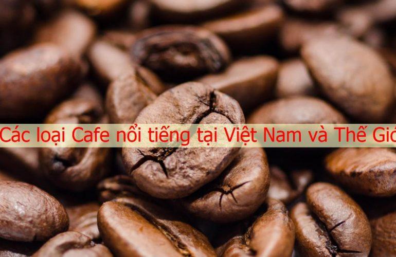 Các loại cà phê nổi tiếng ở Việt Nam và Thế Giới